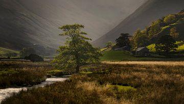 Malerisch schönes Licht im Martindale Valley im schönen Lake District in England von Jos Pannekoek