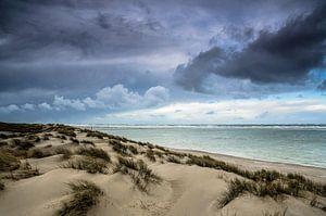 Hollandse duinen | Texel van Ricardo Bouman | Fotografie