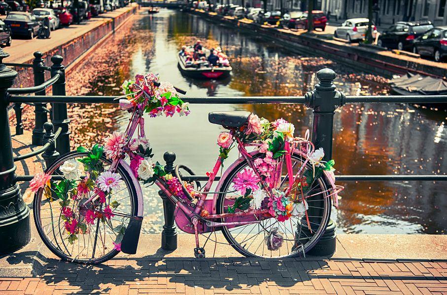 zomer in Den Haag