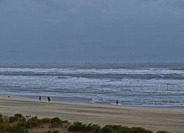 Strand bij storm von Rinke Velds