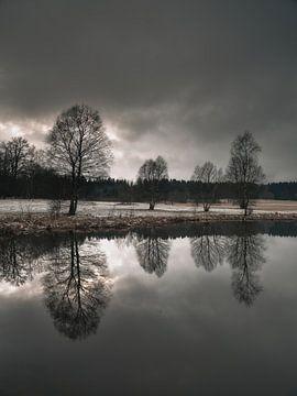 Voor de sneeuwstorm van Max Schiefele