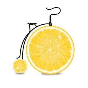 Fruit / Vruchten: Oranje - Oranje - Oranje Fiets
