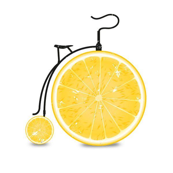 Fruit / Vruchten: Oranje - Oranje - Oranje Fiets van Felix Brönnimann