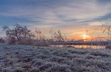 Winterse Zonsopkomst van