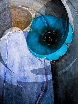 Blau papaver -  samenvatting van Christine Nöhmeier