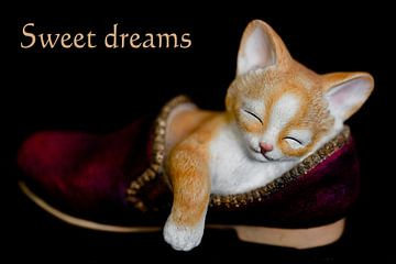 Sweet dreams ......... van Fotografie Jeronimo