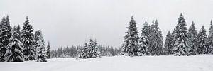 Harz panorama van