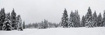 Harz panorama van Gerhard Niezen Photography