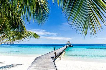 Tropical Paradise doorkijk op een bijna onbewoond eiland van Michael Bollen