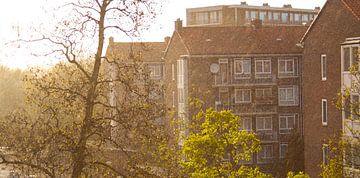 Regenachtig Amsterdam van Livay Consemulder
