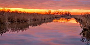 Sunset Oostvaardersplassen von Michiel Leegerstee