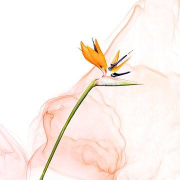 Strelitzie Liquid Art No. 1 van Melanie Viola
