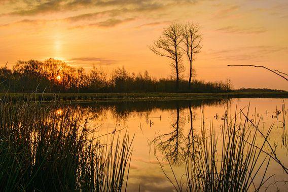 Sonnenaufgang van Heinz Grates