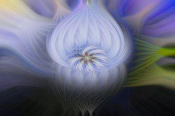 Abstracte bloei van Steffen Peters