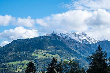 Uitzicht op besneeuwde bergtoppen van Idema Media