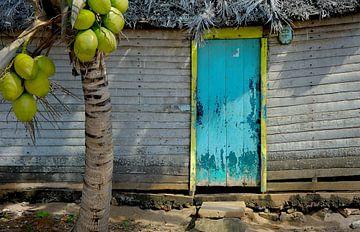 Cubaanse Vissershut sur M DH