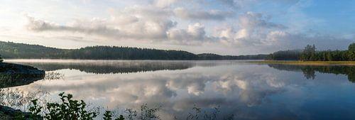 Zweeds panorama
