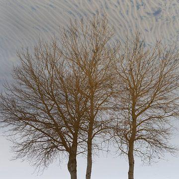 Reflexion von Dick Doorduin