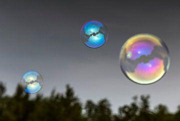 Zeepbellen van Pierre Verhoeven