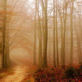 Mistige Morgen von Lars van de Goor