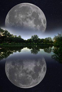 Aufgehender Mond von Corinne Welp