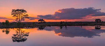 Panorama van een zonsondergang in Nationaal Park Dwingelderveld