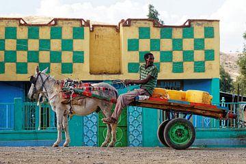 paard met wagen