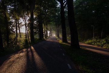 rechte weg met fietspad in de vroege ochtend van FHoo