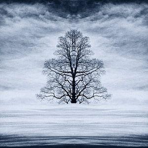 Abstracte boom in de sneeuw van