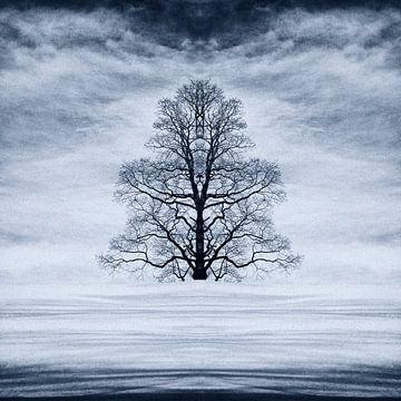 Arbre abstrait dans la neige sur René Glas