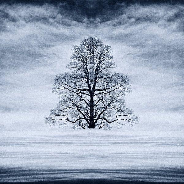Abstracte boom in de sneeuw van René Glas
