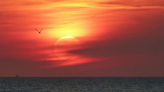 Zonsondergang boven de Noordzee