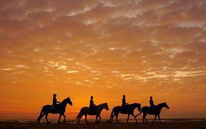 Paarden en hun ruiters