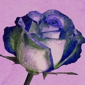 Roos in pastel kleuren van Leo Huijzer