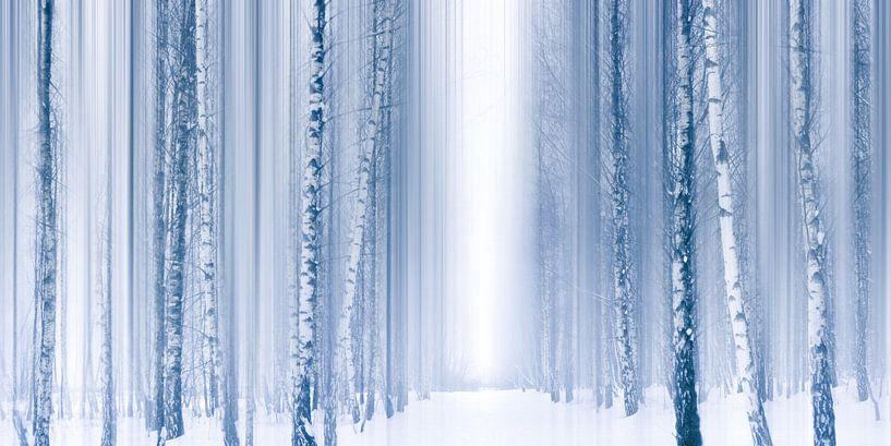 Blue Winter von Violetta Honkisz