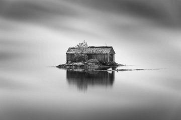 Zwanen bij een bootschuur in Noorwegen van Sem Wijnhoven