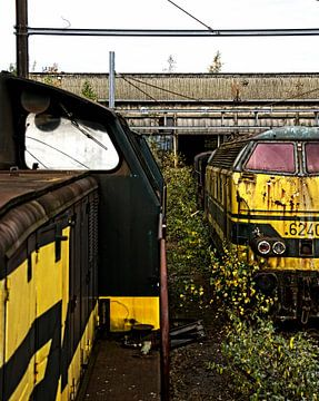 Trains van Erik Bravenboer