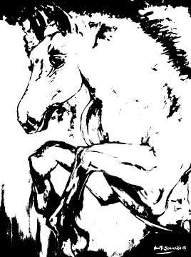 Paardensport van Eberhard Schmidt-Dranske