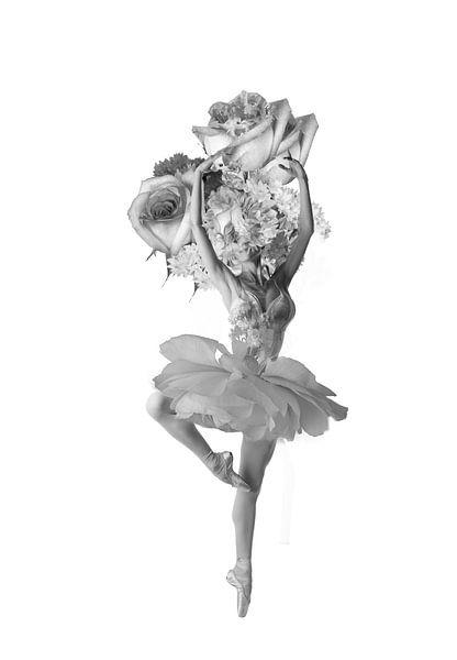 Dancing sur Dreamy Faces