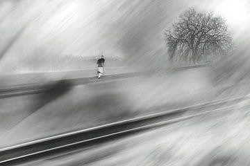 Run Forrest, run van Jurjen Biesbroek