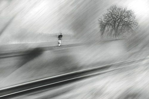 Run Forrest, run van