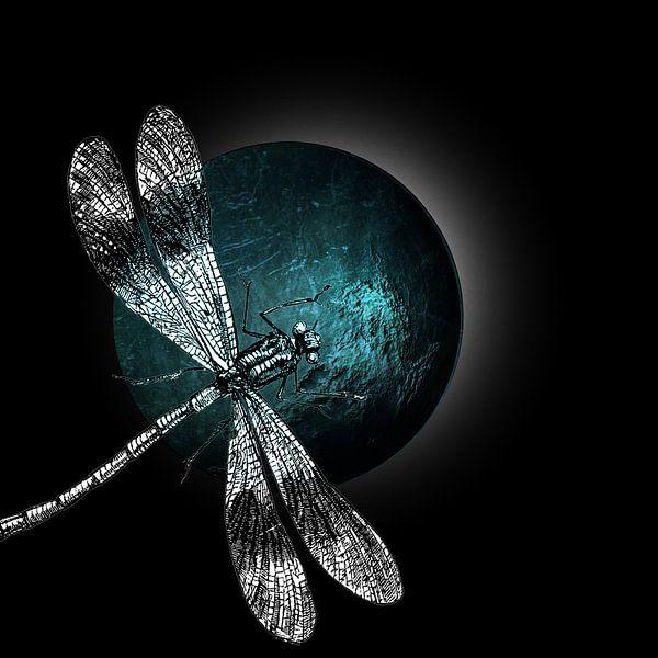 DRAGONFLY IV von Pia Schneider