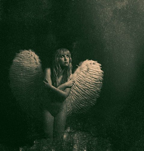 Engel 9 van