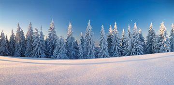 Winterlandschaft auf dem Belchen, Schwarzwald von Markus Lange
