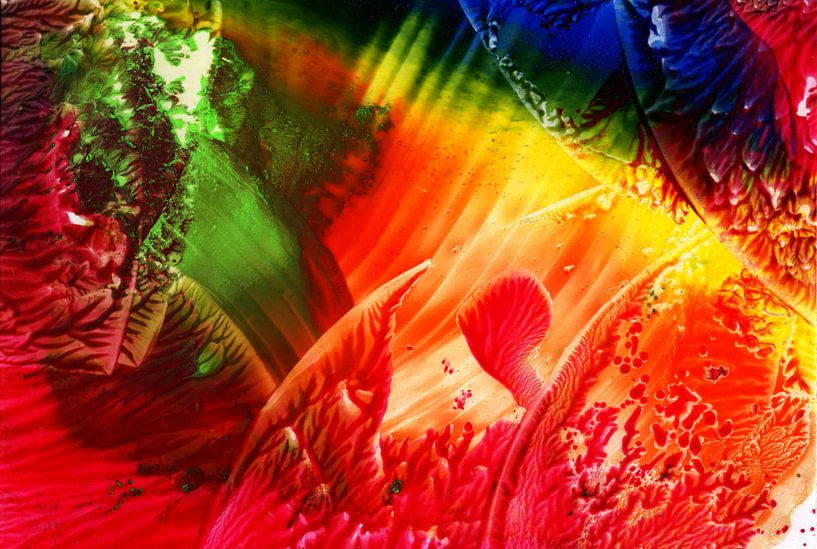 Mindful Colors 24 van Terra- Creative