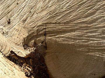 Schaduwen in hout van Elize Fotografie