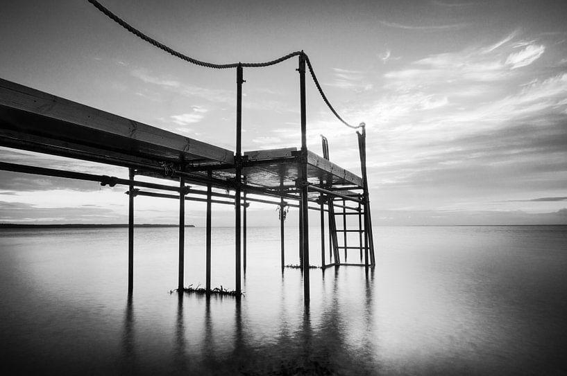 Black Light - Steiger in het water van Tony Buijse