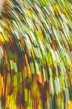 Herbstblatt von Jan Peter Jansen