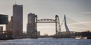 3 Rotterdamse bruggen (kleur)