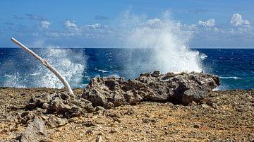 Curacao, die wilde Küste von Boca Tabla von Discover Dutch Nature